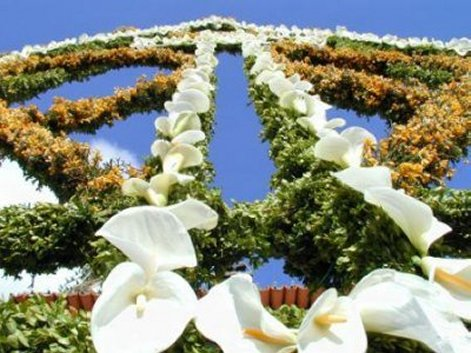 Arco da Almas Santas da Areosa - 2004
